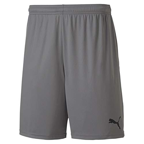 PUMA Herren teamGOAL 23 Knit Shorts, Steel Gray, L