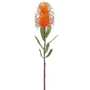24″ Handwrapped Pincushion Protea Silk Flower Stem -Orange (Pack of 4)