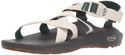 Chaco womens BANDED Z CLOUD Sport Sandal, SALT MALLARD, 6 M US