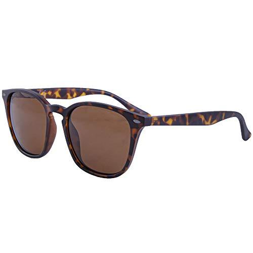 Korda Shoreditch K4D13 Sonnenbrille, polarisiert, Braune Gläser, Karpfenangeln