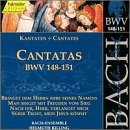 Church Cantatas-Vol. 46