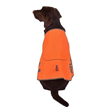 Radiancy Inc Manteau imperméable Haute visibilité pour Chien Gilet de sécurité pour Chien Double Pont … (45, Orange)