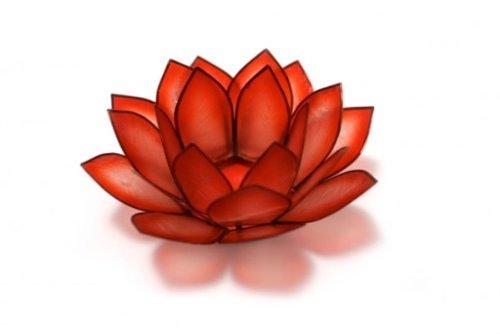 Paradise Red Horizon Capiz Lotus Tea Light Holder