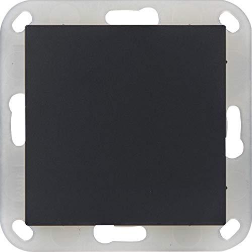 OPUS® 55 tapas ciegas con anillo de plástico color antracita – brillo sedoso