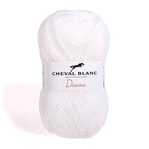 Laines Cheval Blanc - DIANE fil à tricoter 50g - 100% acrylique - Fil pour tricot et crochet - Pelote douce et chaude, idéale tricot adulte et layette