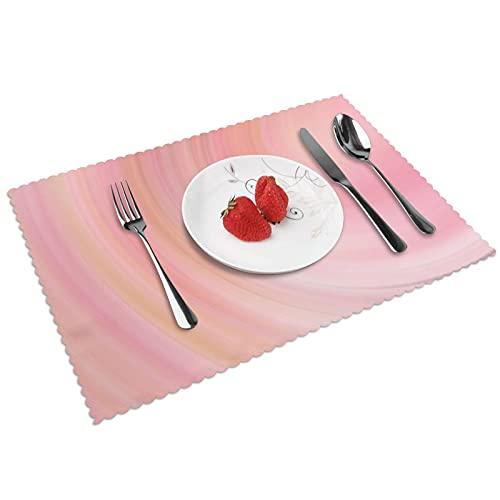 Juego de 4 manteles individuales para interiores y comedores, reutilizables, lavables, 45,7 x 30,5 cm