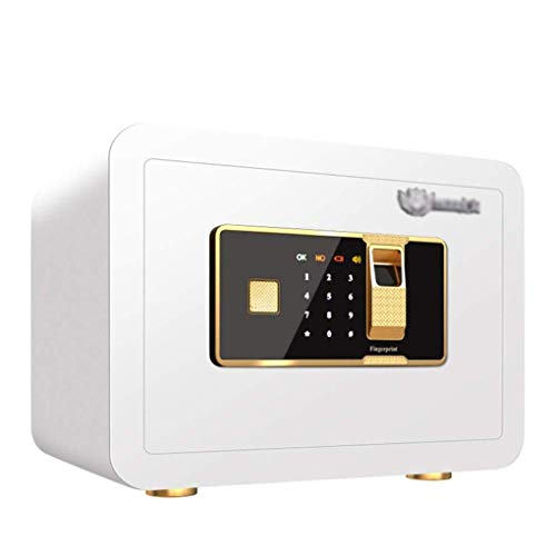 LP-LLL Caja Fuerte Digital con código de Bloqueo de combinación y Llave, Caja de Seguridad biométrica de Huellas Dactilares, Caja Fuerte Oculta para Documentos de Efectivo de joyería, 35x25x25 cm