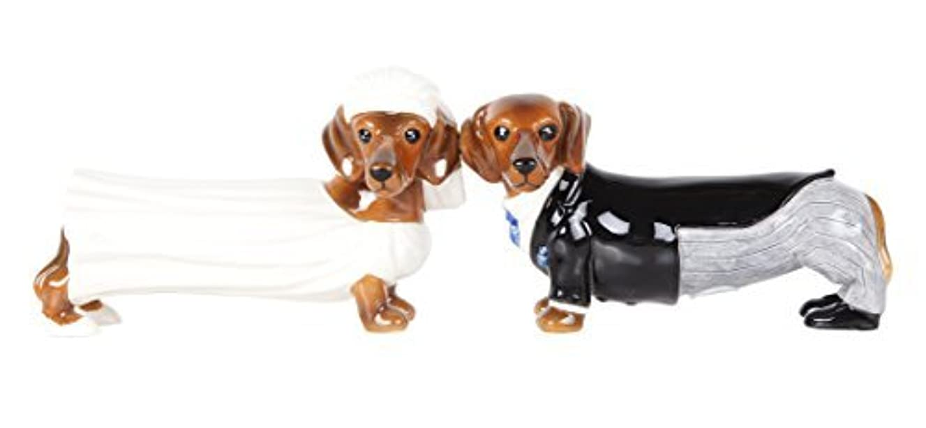 Pacific Giftware Lovely Wedding Bride and Groom Doxies Salt and Pepper Shaker Set Cute Dachshund Wiener Dog Tabletop Decoration SP Set