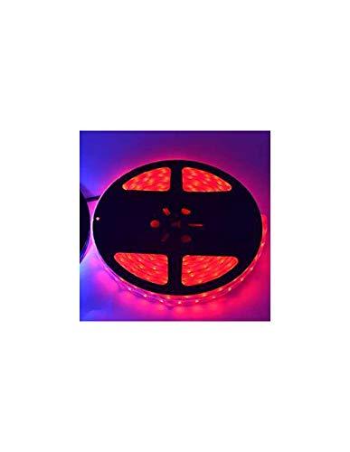 Ruban LED 5m Etanche IP67 - Rouge