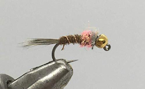 Strike Fly Company One Dozen (12) - Tungsten Beadhead Jig - Frenchie - Light Orange - Nymph (16)