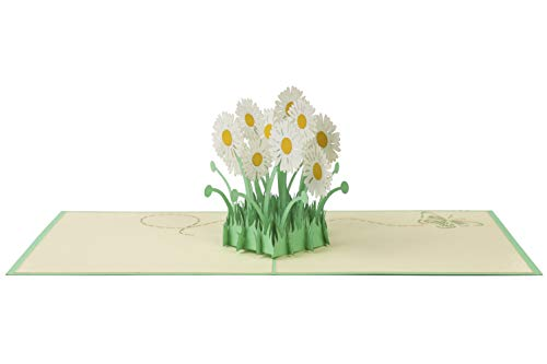 ANSTORE Daisy Patch Pop Up Card, 3D Card, Greeting Card, Mother's Day Card, Spring Card, Summer Card, Birthday Card, Flower Card, Appreciation Card