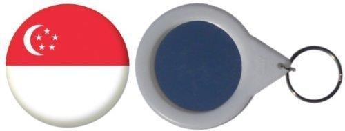 Spiegel Schlüsselbund Flagge Fahne Singapur - 58mm