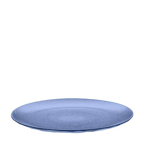 koziol 4005671 Plastic, Dinner, Dessert Plate, Dishes, Outdoors, Camping, Picnic, Vacation