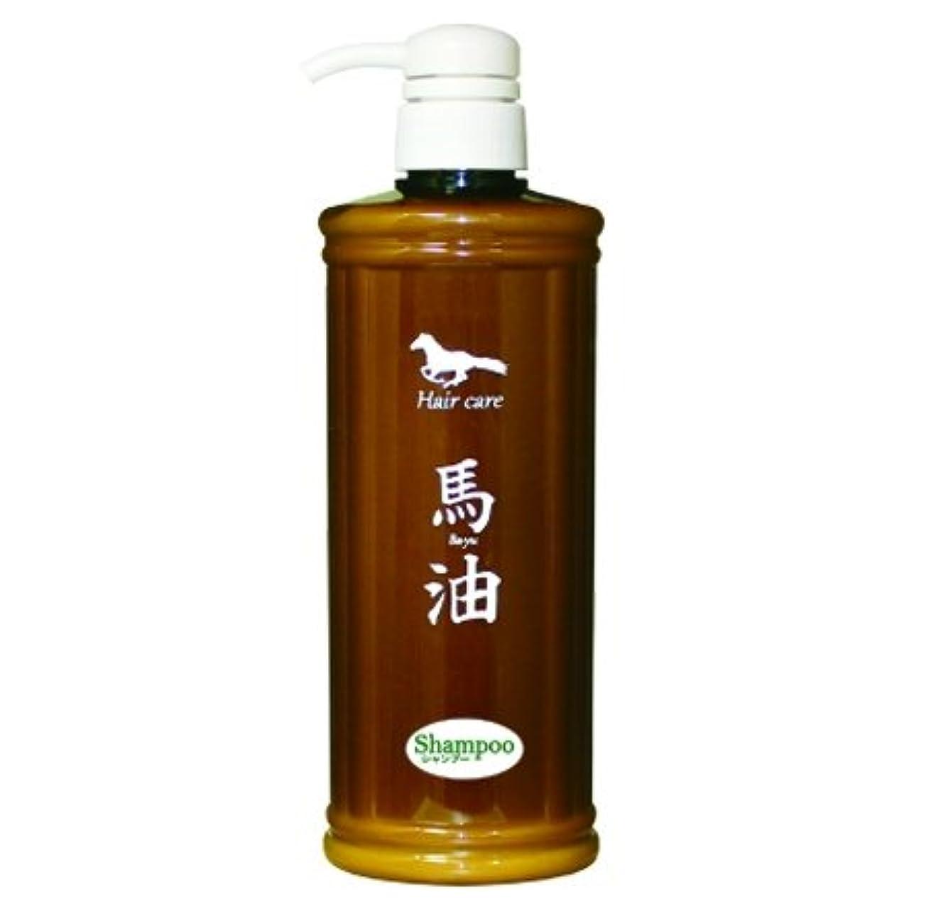 存在する牛強度ゴールドコスメ りりか AKシャンプー 馬油&ツバキ油 550ml