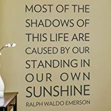 Pegatinas de pared de vinilo para la mayoría de las sombras de esta vida son causadas por citas pegatinas de pared para dormitorios habitación de niños decoración de pared