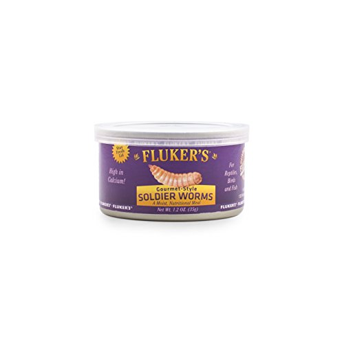 Flukers 78004 Gourmet Canned Soldierworms 1.2Oz Reptile Treat