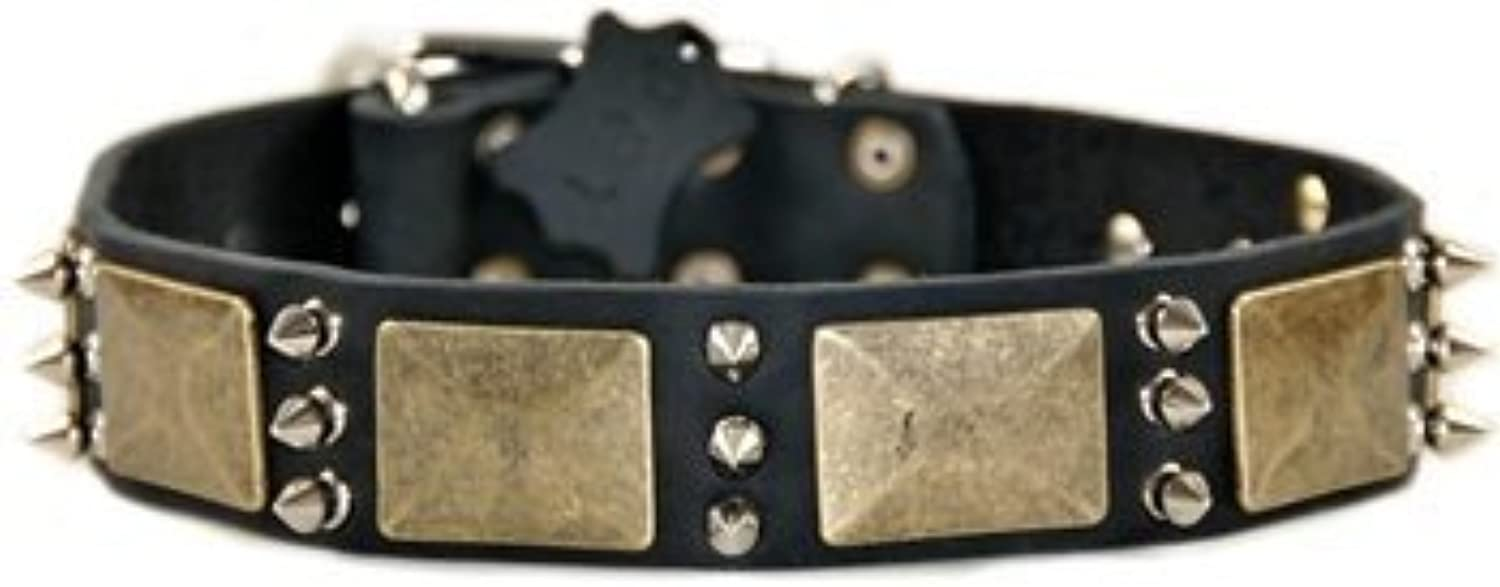 Dean and Tyler BEAUTY AND THE BOLD , Dog Collar with Brass Plate and Nickel Spike  Black  Size 20Inch by 11 2Inch  Fits Neck 18Inch to 22Inch