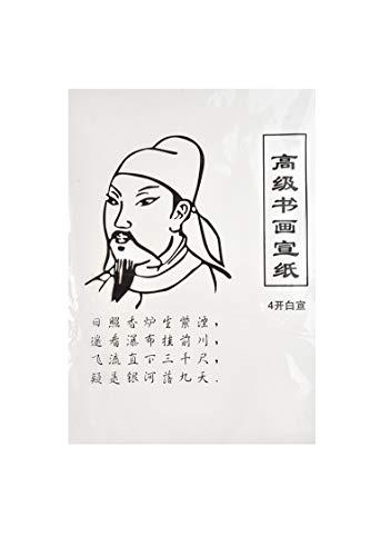 Quantum Abacus Hochwertiges Raw Xuan Papier für Kalligraphie und Malerei, chinesisches Quarto-Format (51cm x 37cm), 28 Blatt, Mod. WP-4.01