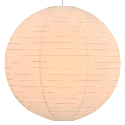 vidaXL Lámpara de Techo Colgante Redonda Luz Salón Bola Colgada de Papel Arroz Blanca Ø60 cm