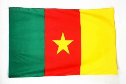 AZ FLAG Flagge KAMERUN 90x60cm - KAMERUNISCHE Fahne 60 x 90 cm - flaggen Top Qualität