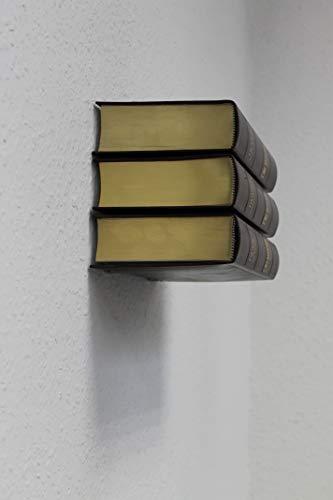 Eisen-Maenicke - Estantería invisible para libros, juego de 2 unidades, metal