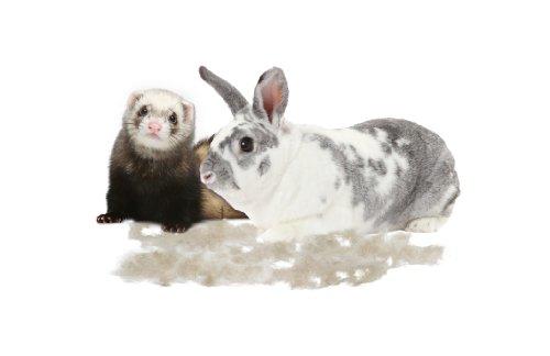 FURminator Fellpflege Fellpflege deShedding-Pflegewerkzeug (für Kleintiere wie Kaninchen oder Frettchen, reduziert das Haaren und verringert Haarballen), 1 stück - 3