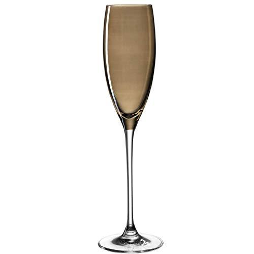 Leonardo Lucente Sekt-Gläser, Sekt-Kelch mit gezogenem Stiel, Sekt-Kelche in Braun, 6er Set, 220 ml, 061771