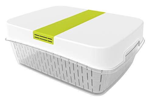 Rotho Fresh Dynamic Box vershouddoos klein met ventilatie, kunststof