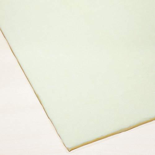 冷凍パン生地 発酵バタークロワッサンシート ISM(イズム) 業務用 1ケース 500g×15