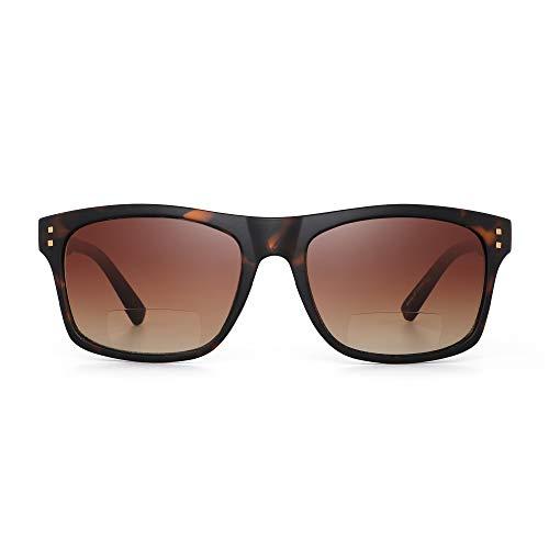 JM Gafas de sol de lectura bifocales para hombres y mujeres Lectores vintage Gafas de sol pleastic para exteriores Gafas de sol Marco de tortuga/Lente marrón +2.0