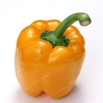 . 100 Stück 5 Farben Pfeffer Gemüse Chili Süße Bunte Zier Pfeffer Skgs Essbare Balkon Pflanze: 4