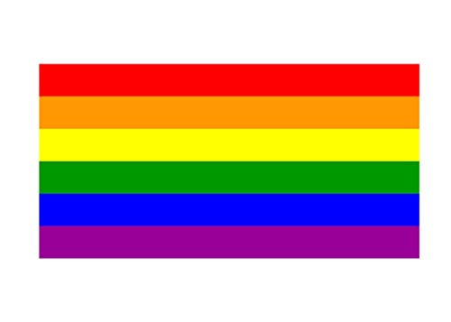 LGBT Rainbow Flag Sticker Car Decal Bumper Sticker Gay Pride Lesbian Bisexual Transgender Support (10x6 Large)