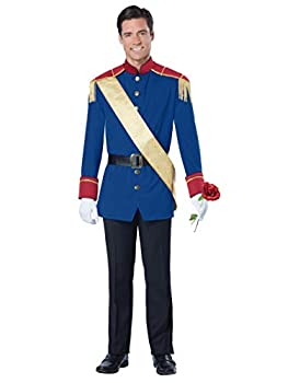 California Costumes Men s Storybook Prince Costume Blue Large
