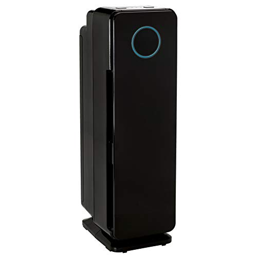Best Air Purifier For Allergies in 2021 3