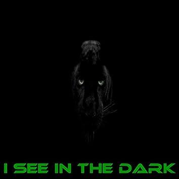 I See in the Dark