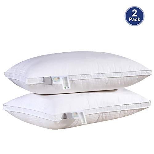 Luxe Eendendons Kussen Voor Slaap, Zacht En Comfortabel Interieurvervangend Standaard Bedkussen, Hoog Elastisch Nek- En Hoofdsteunkussen, 2 Packs