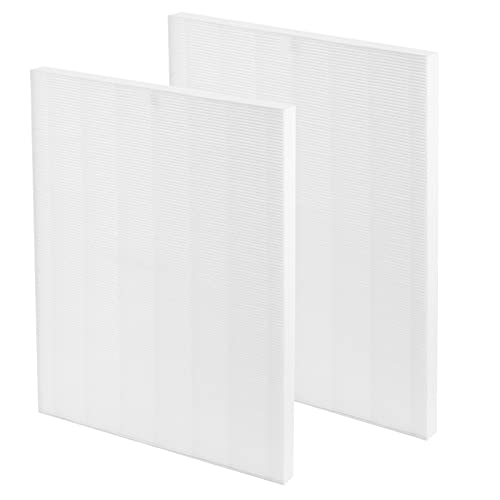 Gvaniamy D480 Replacement Filter D4 Compatible with Winix D480 Air Purifier Ture HEPA Only, Item Number 1712-0100-00, D4 Filter 2 Pack