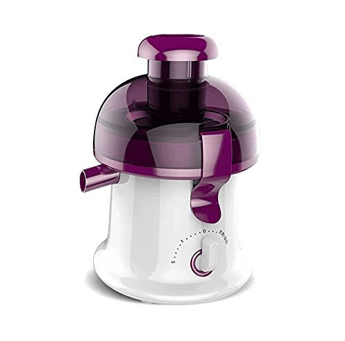WXLBHD Juicer Machines, Cold Press Juicer Machine Easy to Clean, Quiet Motor, BPA-Free, High Nutrient Fruit and Vegetable