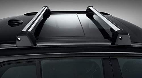 Volvo Original XC40 Lastenträger, Flügelprofil für Dachreling