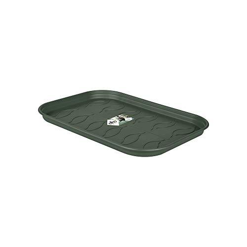 Elho Green Basics Anzucht Untersetzer M - Laubgrün - Drinnen & Draußen - Ø 25.6 x H 2.2 cm