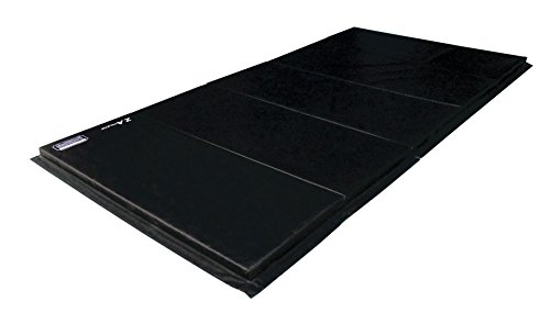 Z-Athletic Folding Panel Mats for Gymnastics, Martial Arts, Tumbling (5ft x 10ft x 2in, Black)