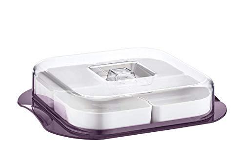 Servierschalen Set mit Deckel | Servierplatte 4-fach geteilt ideal für Frühstück, Antipasti Platte, Snacks & Dips | Süßigkeiten Snackschale Servier Set Box 26x6 cm | Servierset (Quadratisch Aubergine)