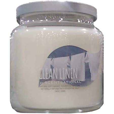 Pine /& Clementine Scentsational Soy Blend Wax 11oz Cotton 1 Wick Winter Candle