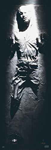 Star Wars Han Solo Carbonite Unisex Poster Multicolor Papier 53 x 158 cm Fan-Merch, Filme