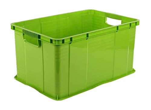 Rotho Agilo Aufbewahrungsbox 55l, Kunststoff (PP) BPA-frei, grün, A3/55l (59,0 x 39,0 x 31,0 cm)
