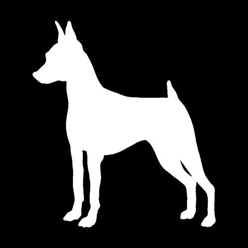 PJYGNK Sticker de Carro 11,2 * 12,7 CM Pegatinas de Coche de Perro Pinscher en Miniatura calcomanía de Vinilo Creativa decoración de camión de Estilo de Coche Negro/Plata S1-0697