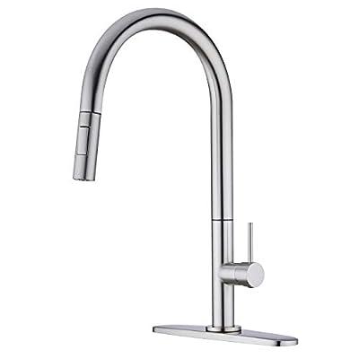 Amazon - Save 50%: Delle Rosa Kitchen Faucet, Lead Free Brass Kitchen Faucet, Kitchen Faucet wi…