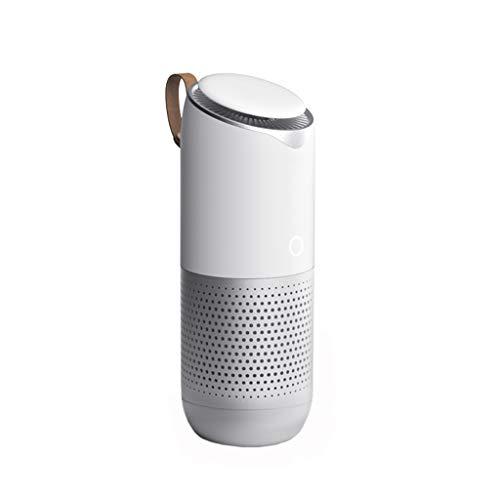 Auto-Ionisator-Luftreiniger und USB-Ladegerät Auto-Luftreiniger Ionischer Luftreiniger mit schnellem Aufladen entfernt Rauch, schlechten Geruch und Geruchsentferner