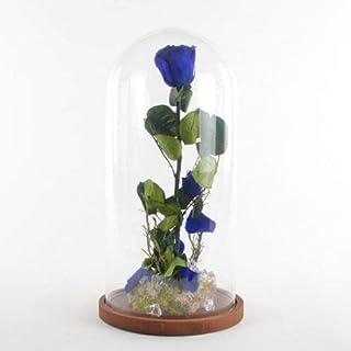 Collezione fiabe | La rosa Incantata eterna Blu | Big