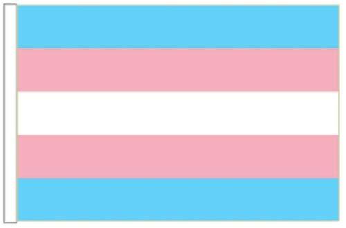 FlagSuperstore© Transgender-Bootsflagge 45 x 30 cm – Baumhäuser, Wohnwagen – Ärmel 45 cm x 30 cm – Gay Pride LGBTQ